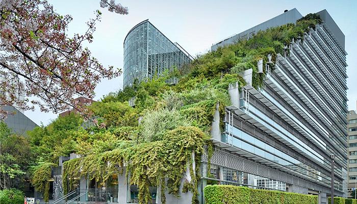 techos verdes biodiversos